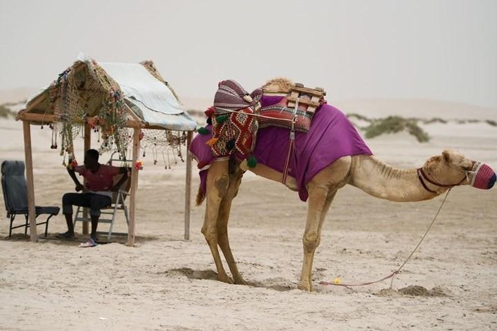 Hình ảnh đất nước Qatar hiện đại và đáng sống giữa sa mạc nóng bỏng - Ảnh 12.