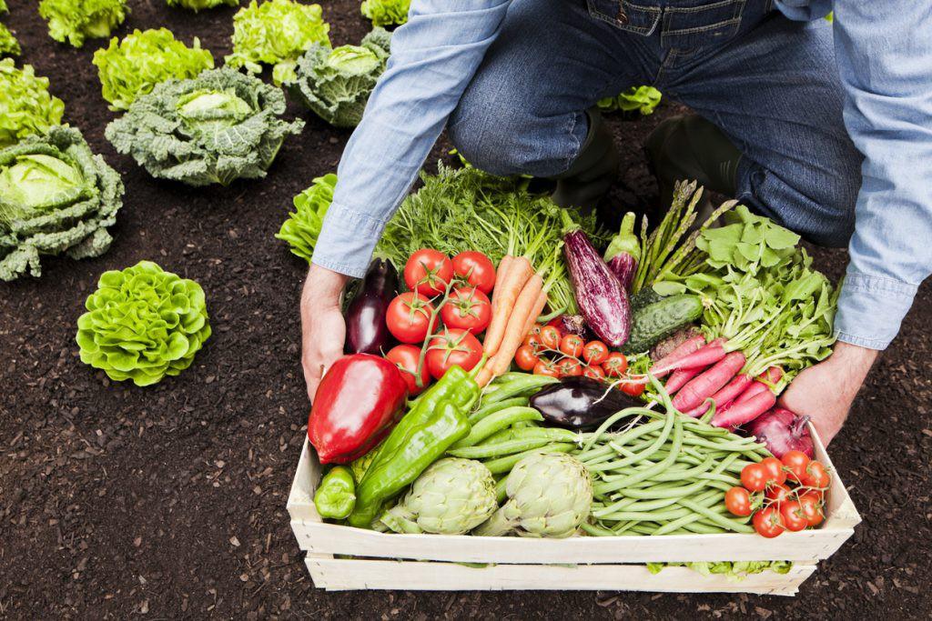 Có thể bạn đang Eat Clean sai cách nếu chưa nắm rõ 8 nguyên tắc cơ bản của chế độ ăn này - Ảnh 3.