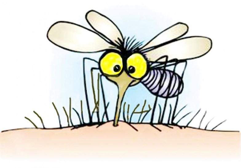 Bạn thường xuyên bị muỗi đốt, những lý do kì lạ sau có thể là thủ phạm - Ảnh 1.