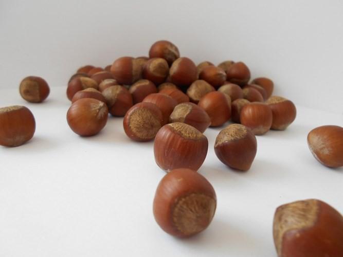 Những loại hạt nhiều dinh dưỡng nên ăn mỗi ngày - Ảnh 16.