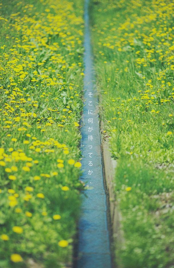 Được quay ở thị trấn nhiếp ảnh nên đừng hỏi vì sao Nhật Bản trong Nhắm mắt thấy mùa hè lại đẹp ngẩn ngơ đến thế - Ảnh 7.