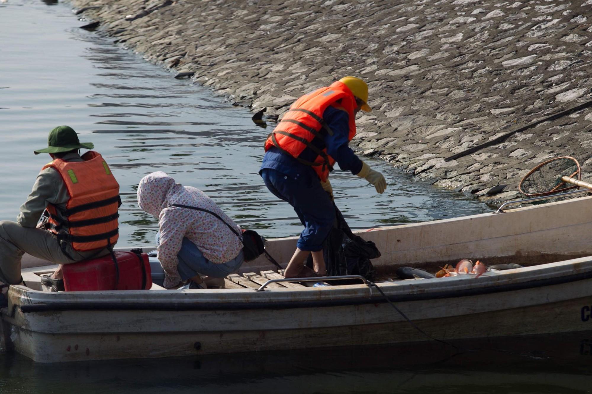 Hà Nội: Cá lại tiếp tục chết, bốc mùi hôi thối ở hồ Hoàng Cầu 2