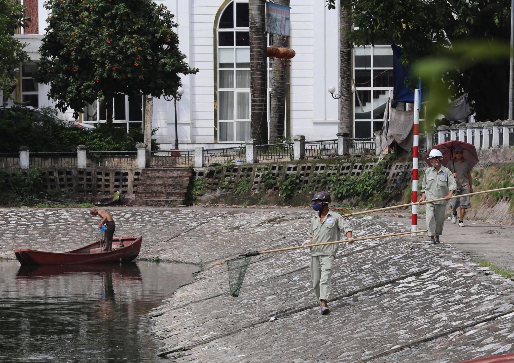 Hà Nội: Cá lại tiếp tục chết, bốc mùi hôi thối ở hồ Hoàng Cầu 4