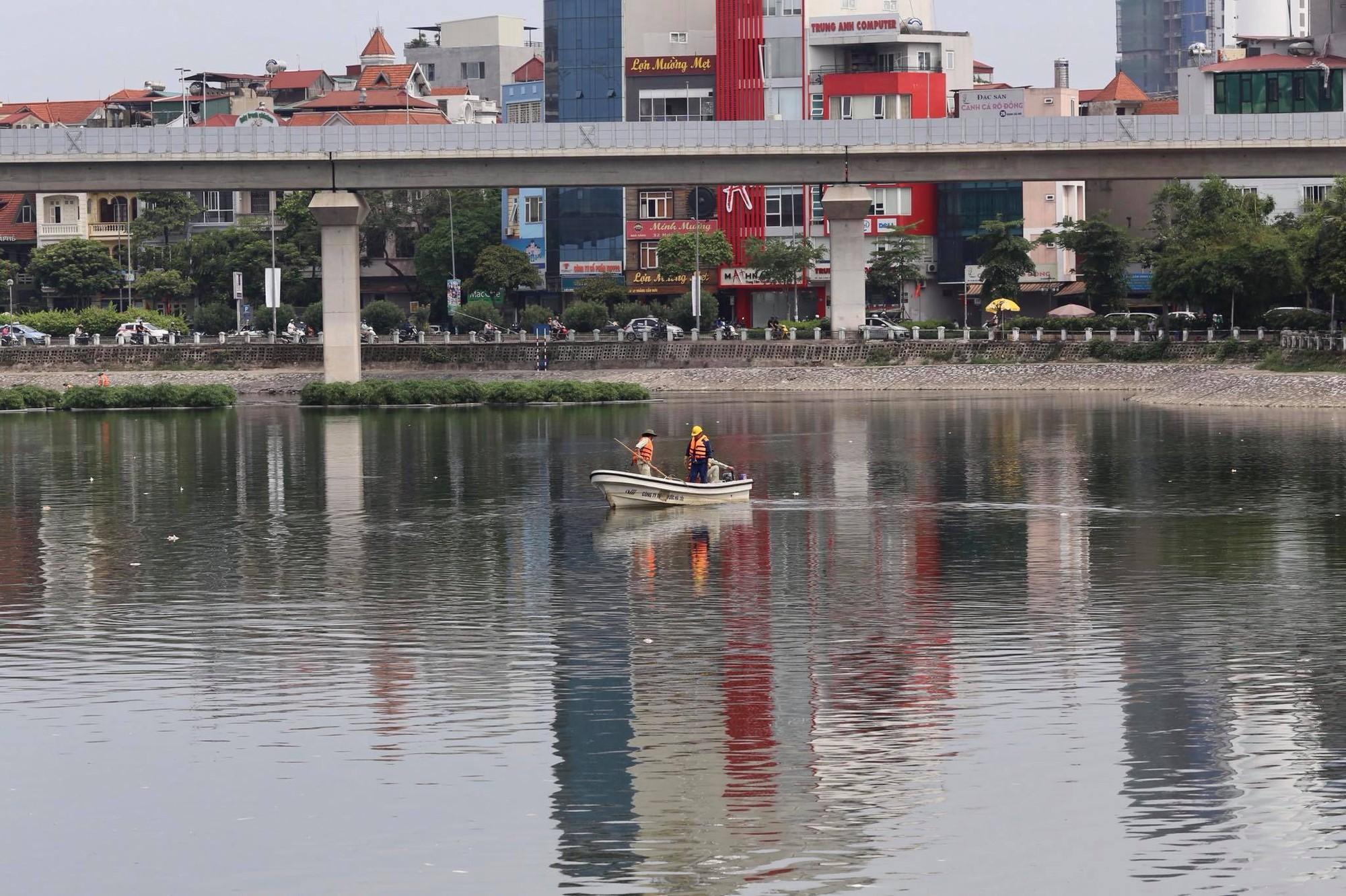 Hà Nội: Cá lại tiếp tục chết, bốc mùi hôi thối ở hồ Hoàng Cầu 5