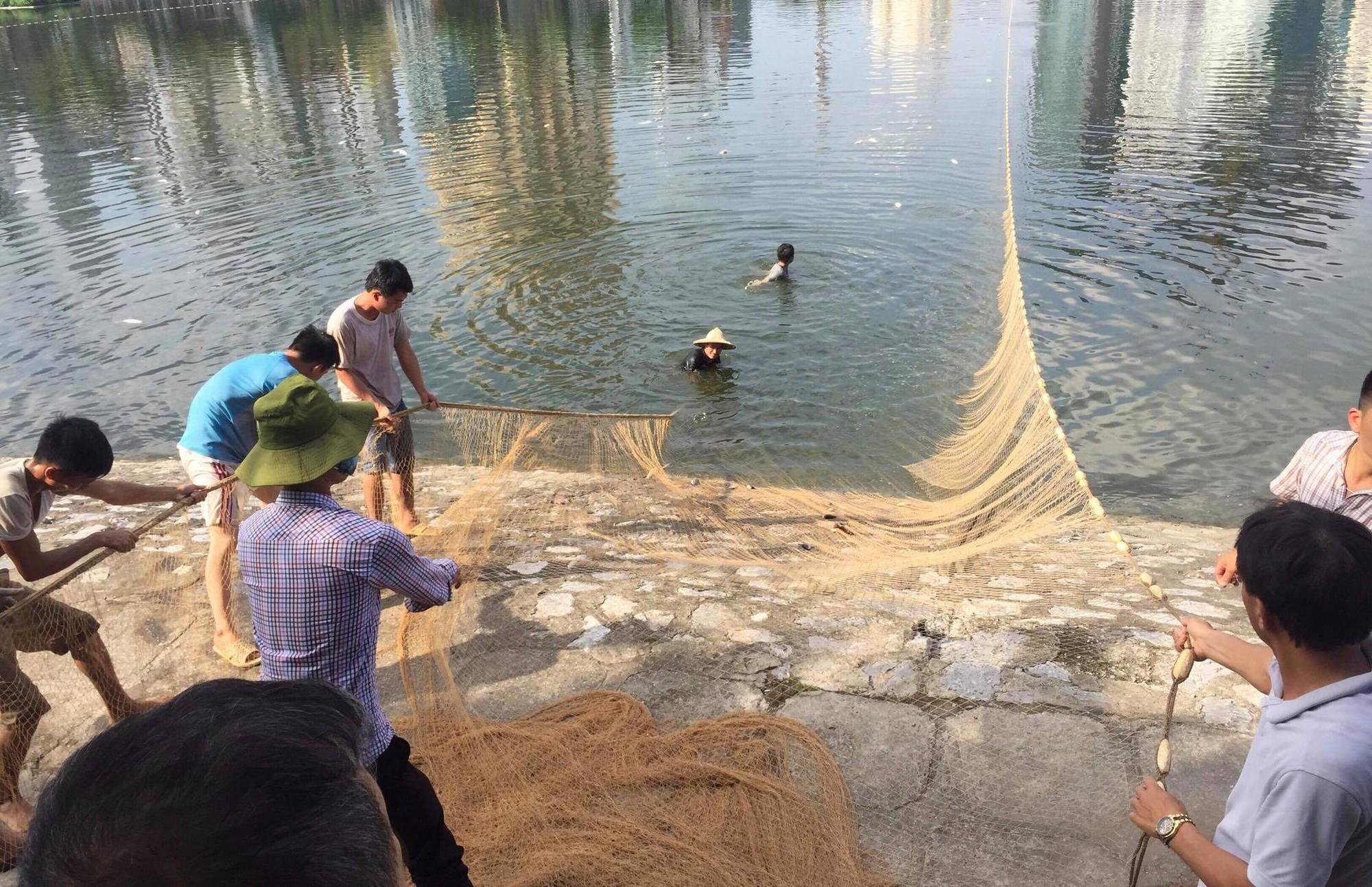 Hà Nội: Cá lại tiếp tục chết, bốc mùi hôi thối ở hồ Hoàng Cầu 3