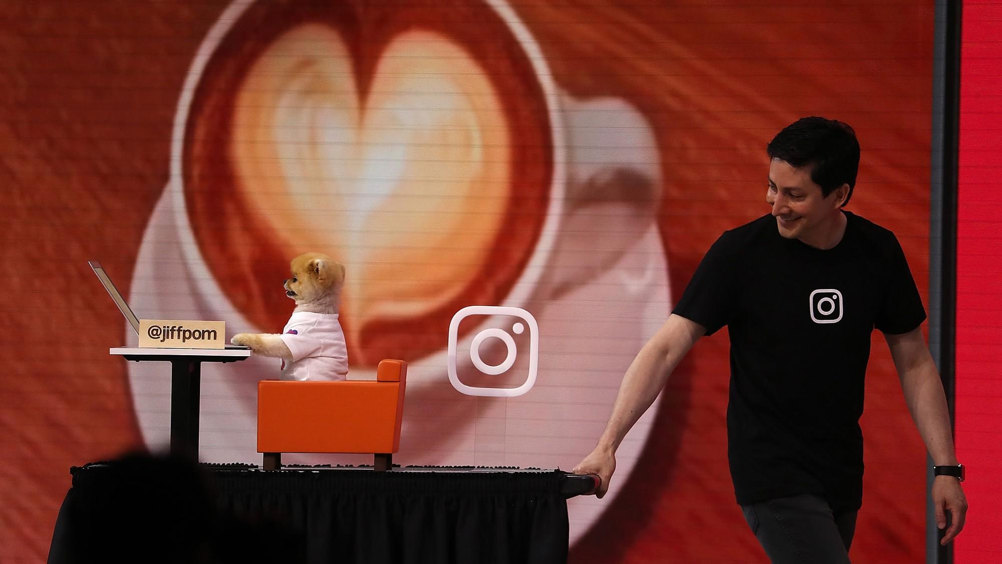 Đọ sức nóng với Hot dog 8 triệu follower Instagram: Được dự event của Mark Zuckerberg, đóng MV cho Katy Perry... - Ảnh 4.