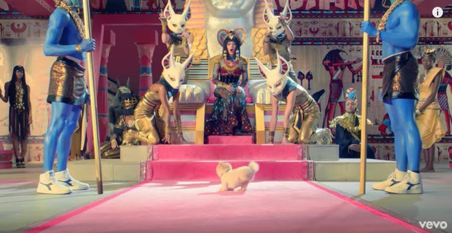 Đọ sức nóng với Hot dog 8 triệu follower Instagram: Được dự event của Mark Zuckerberg, đóng MV cho Katy Perry... - Ảnh 8.