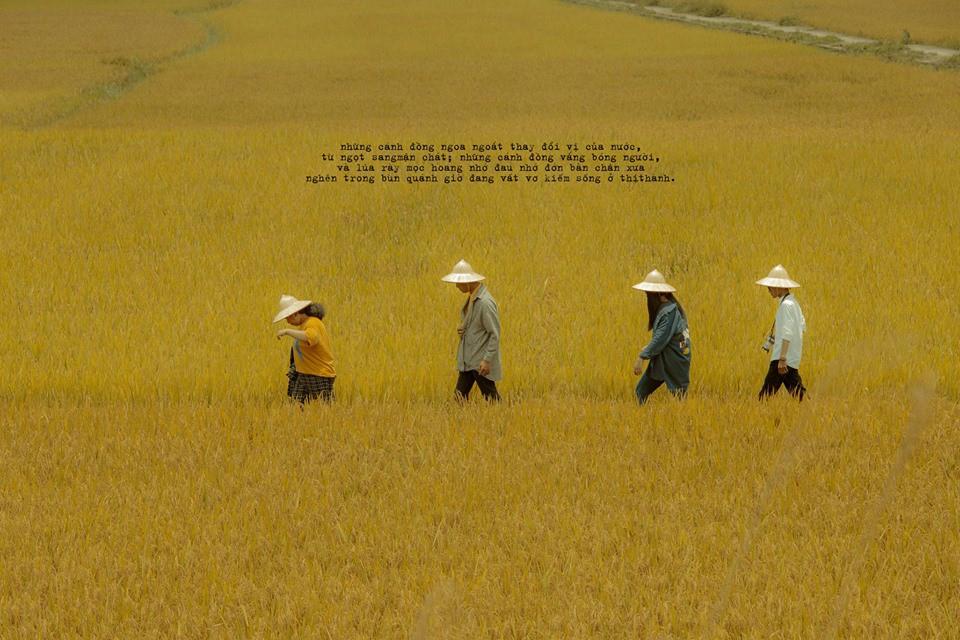 Cũng đi Huế - Đà Nẵng - Hội An mà nhóm bạn này có nguyên một bộ ảnh đẹp và nghệ như poster phim - Ảnh 2.