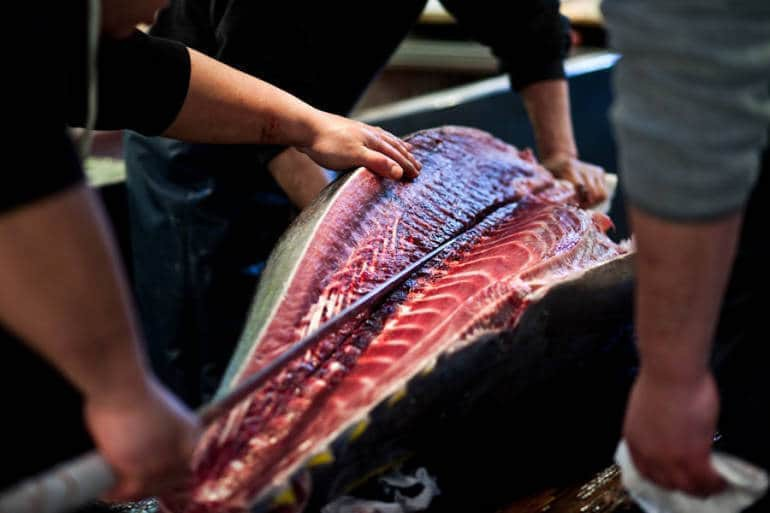 Trong chợ cá lớn nhất thế giới tại Nhật Bản: Mỗi con cá ngừ được bán với giá bằng vài ngôi nhà Nhật Bản - Ảnh 2.