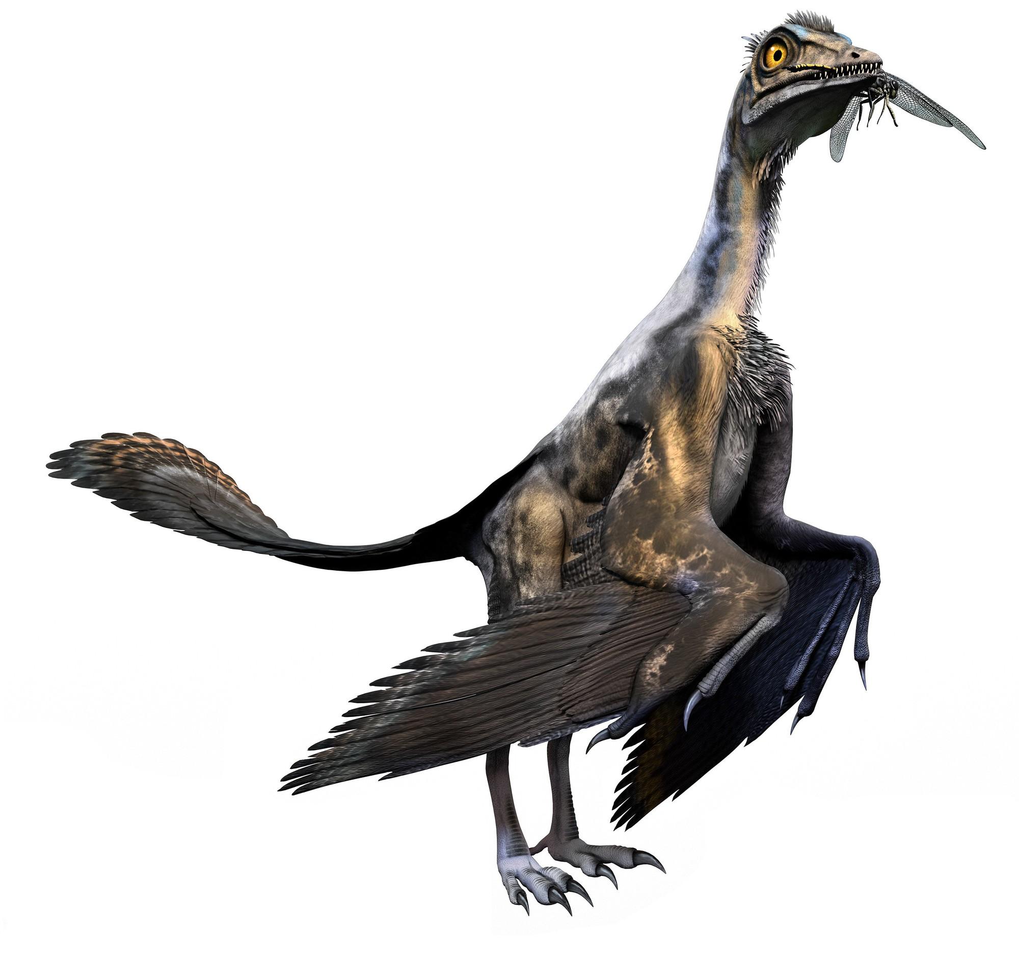 Hỏi thật: Liệu con người có thể hồi sinh khủng long như trong Jurassic World không? - Ảnh 6.
