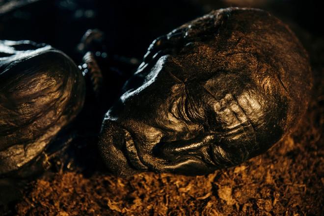 Tollund Man - Bí ẩn xác ướp 2.400 năm tuổi vẫn mỉm cười dù bị treo cổ đến chết - Ảnh 5.