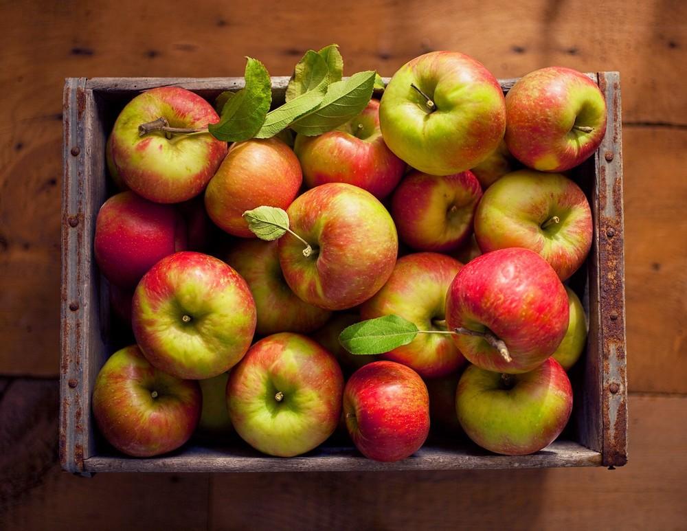 Mấy ngày nắng nóng cứ bổ sung những loại trái cây này thì vừa mát cơ thể, vừa đẹp dáng, đẹp da bất ngờ - Ảnh 6.