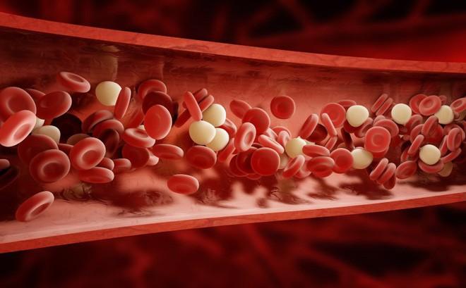 10 dấu hiệu cảnh báo sớm bệnh tiểu đường mà bạn không nên chủ quan bỏ qua - Ảnh 6.
