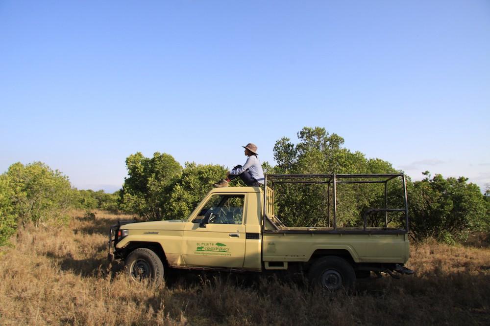 Cô gái tê giác Nguyễn Thị Thu Trang: Bảo tồn động vật hoang dã cũng chính là trực tiếp bảo vệ đồng loại của mình - Ảnh 4.