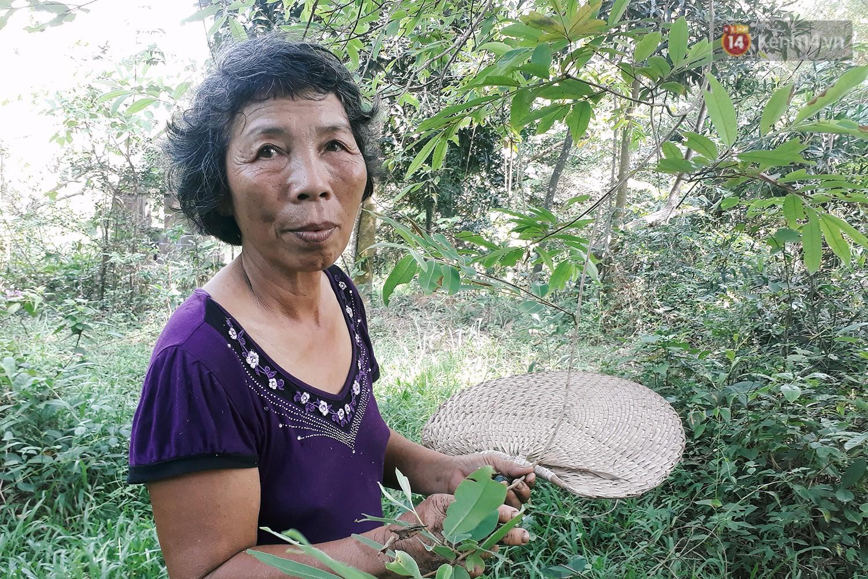 Cô giáo về hưu 15 năm sống trên ốc đảo ở Vĩnh Phúc: Không ra chợ, không biết bệnh tật và không cần đến tiền! - Ảnh 2.