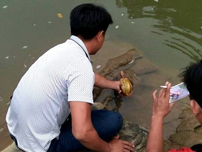 Thấy hai thanh niên mang rùa vàng từ rừng ra, người dân mua rồi thả về tự nhiên - Ảnh 3.