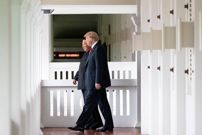 Chuyên gia ngôn ngữ cơ thể tiết lộ những điều bất ngờ trong cuộc gặp gỡ lịch sử giữa hai nhà lãnh đạo Trump và Kim - Ảnh 1.