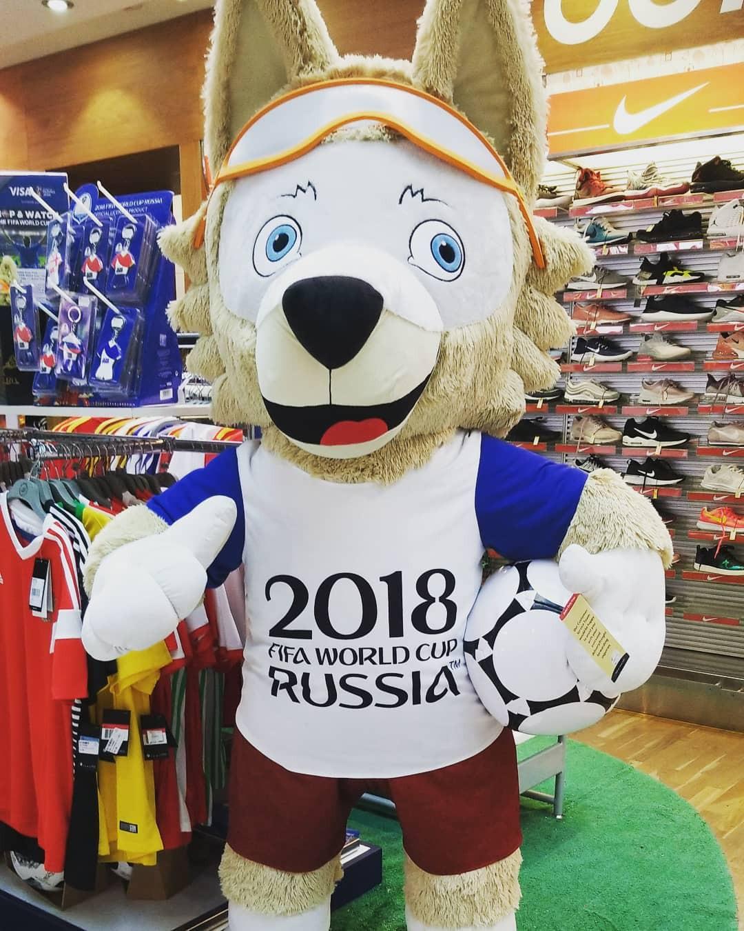 Người hâm mộ trên khắp thế giới hào hứng chờ đón khai mạc World Cup 2018 - Ảnh 18.