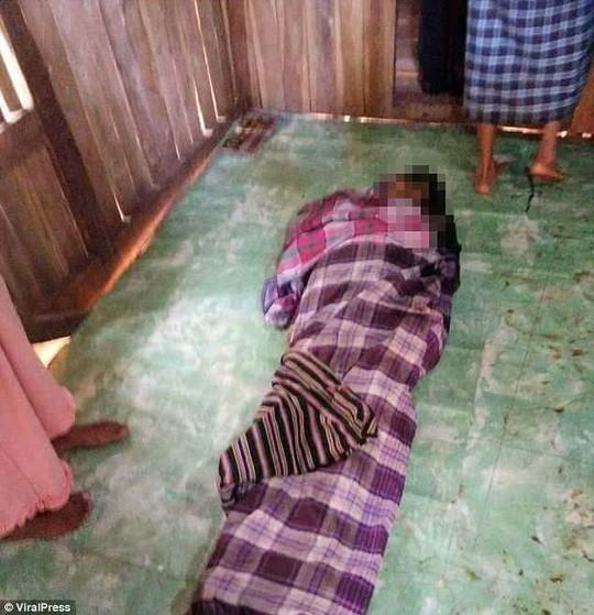 Mổ bụng trăn 8m, kinh hoàng phát hiện thi thể một phụ nữ Indonesia 2
