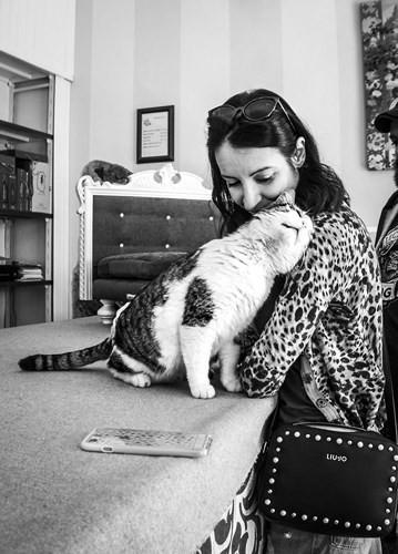 Bộ ảnh Catisfaction chụp lại khoảnh khắc hạnh phúc của những chú mèo - Ảnh 3.