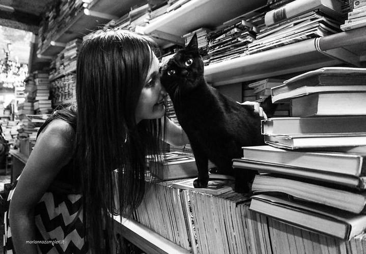 Bộ ảnh Catisfaction chụp lại khoảnh khắc hạnh phúc của những chú mèo - Ảnh 6.