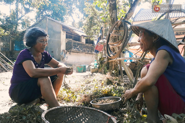 Những người bỏ phố thị, chẳng màng tiền bạc và dành phần đời còn lại để sống bình thản giữa núi rừng thiên nhiên - Ảnh 2.