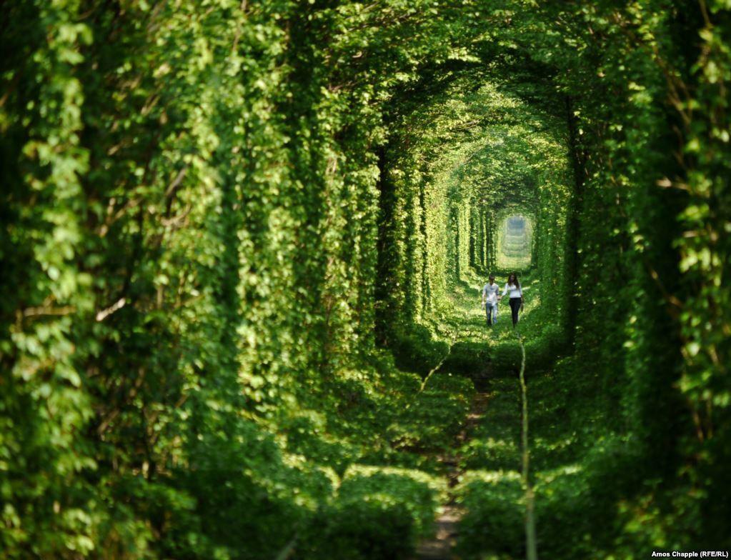 """Ghé thăm """"đường hầm tình yêu"""" đẹp ma mị ở Ukraine, nơi những cặp đôi một lần lạc bước sẽ chẳng muốn quay về - Ảnh 1."""