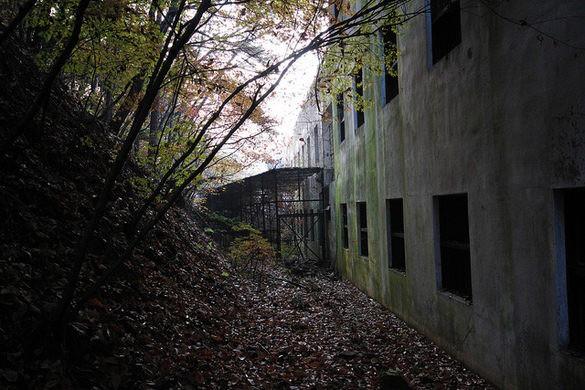Bị buộc đóng cửa sau hàng loạt cái chết bí ẩn, bệnh viện tâm thần bị bỏ hoang 20 năm tại Hàn Quốc là một trong những nơi đáng sợ nhất thế giới - Ảnh 2.