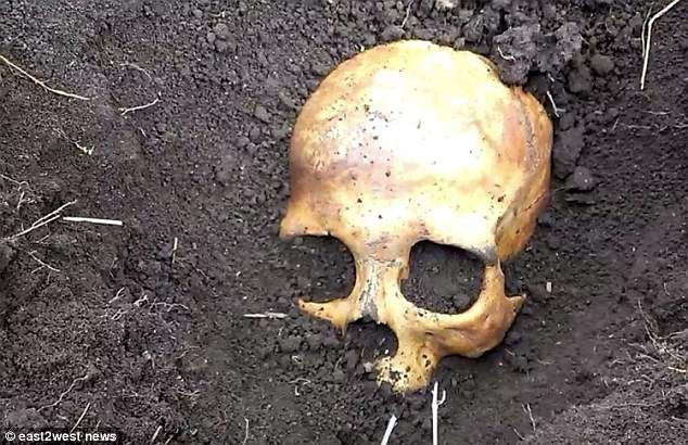 Đào vườn bắt được hộp sọ trắng ởn, lão nông nước Nga sợ mất mật khi vợ bảo Chồng cũ của em đấy, chôn lại đi anh. - Ảnh 1.
