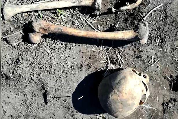 Đào vườn bắt được hộp sọ trắng ởn, lão nông nước Nga sợ mất mật khi vợ bảo Chồng cũ của em đấy, chôn lại đi anh. - Ảnh 3.