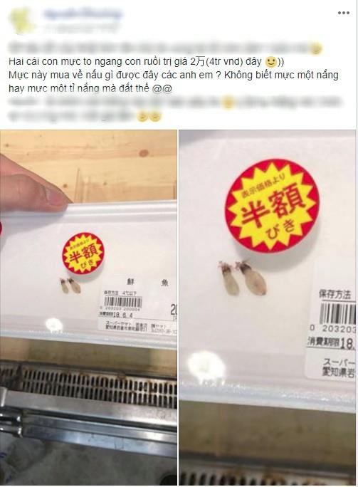 Hai chú mực một nắng to bằng con chấy có giá đến 4 triệu đồng trong siêu thị Nhật khiến dân mạng Việt xôn xao - Ảnh 1.