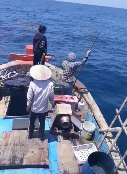 Nhóm ngư dân bị chỉ trích dữ dội vì săn bắt cá heo rồi đăng lên Facebook khoe - Ảnh 3.