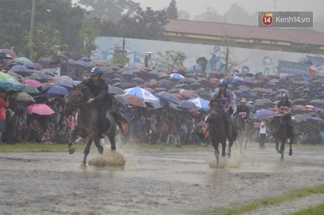 Bất chấp cơn mưa tầm tã, gần 50.000 lượt người đội mưa xem đua ngựa ở Bắc Hà - Ảnh 1.
