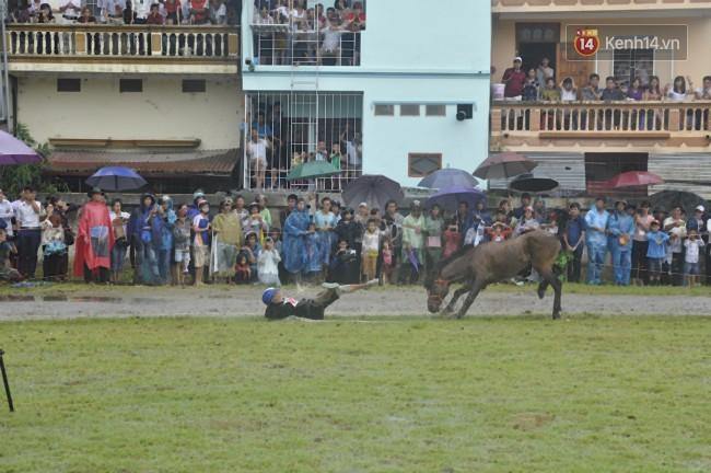 Bất chấp cơn mưa tầm tã, gần 50.000 lượt người đội mưa xem đua ngựa ở Bắc Hà - Ảnh 10.