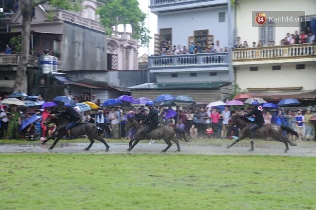 Bất chấp cơn mưa tầm tã, gần 50.000 lượt người đội mưa xem đua ngựa ở Bắc Hà - Ảnh 11.