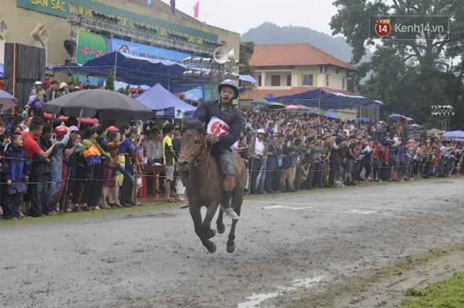 Bất chấp cơn mưa tầm tã, gần 50.000 lượt người đội mưa xem đua ngựa ở Bắc Hà - Ảnh 13.