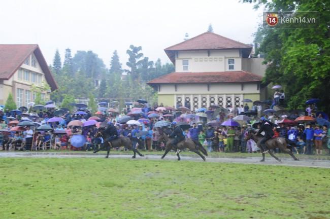 Bất chấp cơn mưa tầm tã, gần 50.000 lượt người đội mưa xem đua ngựa ở Bắc Hà - Ảnh 17.