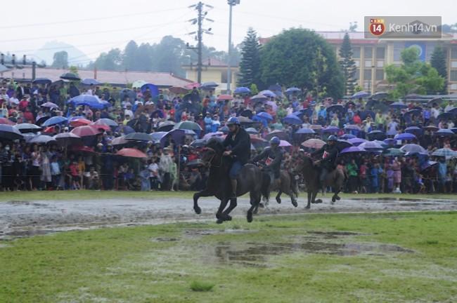 Bất chấp cơn mưa tầm tã, gần 50.000 lượt người đội mưa xem đua ngựa ở Bắc Hà - Ảnh 5.