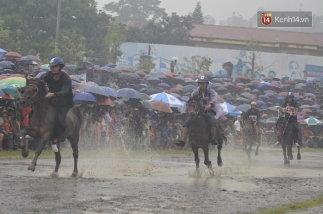 Bất chấp cơn mưa tầm tã, gần 50.000 lượt người đội mưa xem đua ngựa ở Bắc Hà - Ảnh 8.
