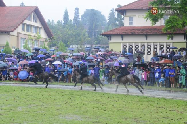Bất chấp cơn mưa tầm tã, gần 50.000 lượt người đội mưa xem đua ngựa ở Bắc Hà - Ảnh 9.