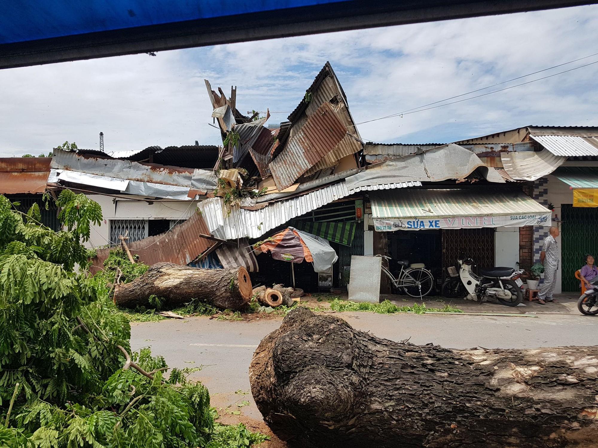 Cây cổ thụ ở Sài Gòn bật gốc đè 3 căn nhà, bé gái 13 tuổi bị thương cấp cứu - Ảnh 2.