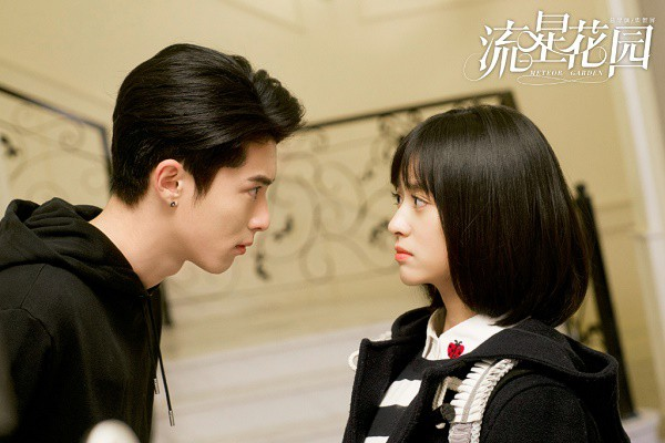 """""""Mọt"""" phim Trung nằm mơ cũng không ngờ có ngày """"Vườn Sao Băng"""" 2018 bị chê tơi tả như thế này! - Ảnh 3."""