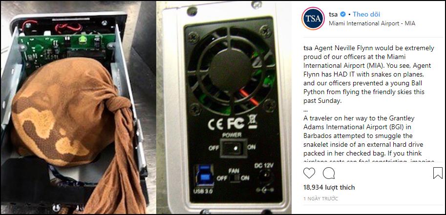 Mỹ: Dùng ổ cứng máy tính để giấu trăn buôn lậu, hành khách nữ bị máy quét tóm ngay tại trận - Ảnh 1.