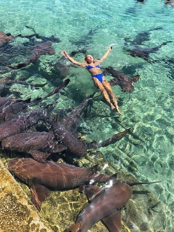 Lội xuống biển chụp ảnh, cô người mẫu hết hồn khi bị cá mập cắn yêu một nhát - Ảnh 3.