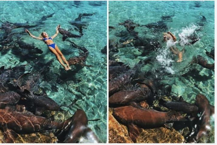 Lội xuống biển chụp ảnh, cô người mẫu hết hồn khi bị cá mập cắn yêu một nhát - Ảnh 4.