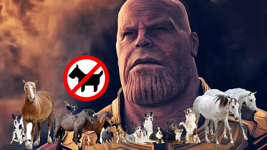 Thêm một sự thật về độ tàn nhẫn của Thanos được tiết lộ: Búng tay rút gọn phân số cả người lẫn thú! - Ảnh 1.
