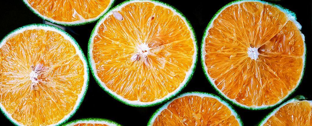 Đây là loại quả ai cũng nên ăn nếu KHÔNG muốn mắt dễ mù khi về già - Ảnh 1.