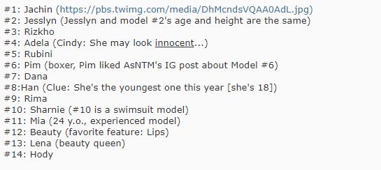 Asias Next Top Model tung dữ kiện mới, đây mới là át chủ bài của Việt Nam? - Ảnh 3.