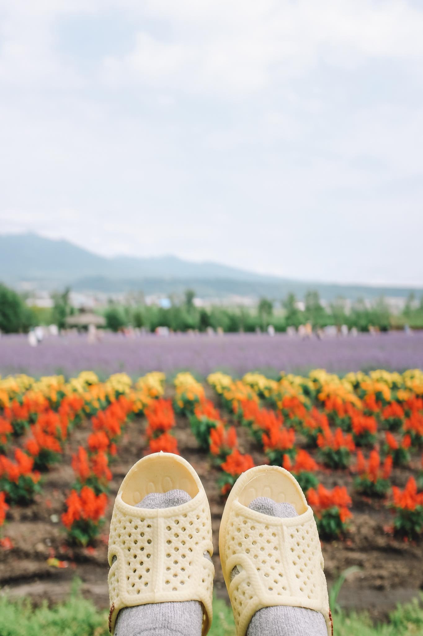 Thánh dép tổ ong tái xuất với bộ ảnh mới, lần này là rong ruổi miền Bắc nước Nhật xinh đẹp - Ảnh 15.