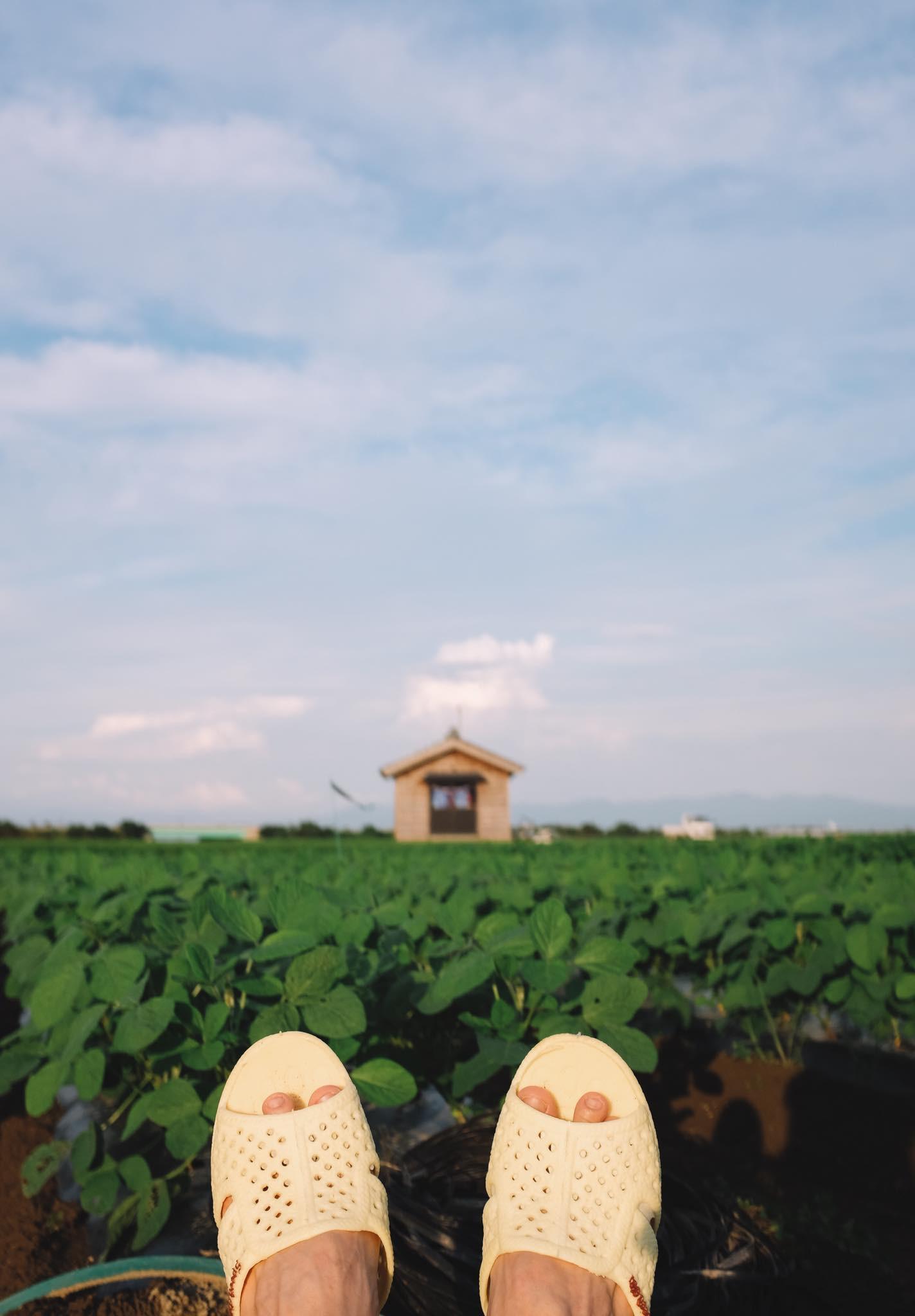 Thánh dép tổ ong tái xuất với bộ ảnh mới, lần này là rong ruổi miền Bắc nước Nhật xinh đẹp - Ảnh 1.